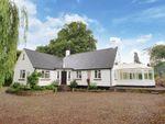 Thumbnail to rent in Weston, Pembridge, Herefordshire