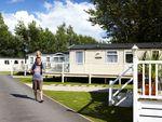 Thumbnail to rent in Week Ln, Devon