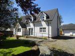 Thumbnail to rent in Clydeshore Road, Dumbarton