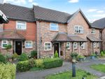 Thumbnail for sale in Grange Mews, Winchester Hill, Romsey, Hampshire