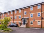 Thumbnail to rent in Waterview Park, Leigh, Lancashire