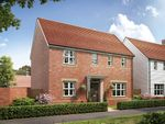 """Thumbnail to rent in """"The Clayton Corner"""" at Ostrich Street, Stanway, Colchester"""