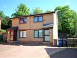Thumbnail to rent in Glencoats Drive, Paisley