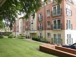 Thumbnail to rent in Terrys Mews, York, North Yorkshire