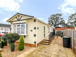 Thumbnail for sale in Central Drive, Oaktree Park, Ringwood, Hampshire