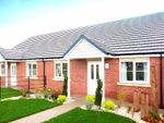 Thumbnail to rent in Acacia Drive, Sowerby, Thirsk