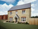 Thumbnail to rent in Sowthistle Drive, Hardwicke