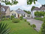 Thumbnail for sale in Stunning, Spacious Bungalow, Risca Road, Newport