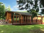 Thumbnail to rent in Halwill, Beaworthy, Devon