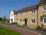 Thumbnail for sale in Buttercup Walk, Red Lodge, Bury St. Edmunds