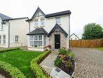 Thumbnail to rent in River Hill Crescent, Newtownards