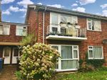 Thumbnail to rent in Park North, Ipswich