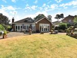 Thumbnail for sale in Springfield Road, Camberley
