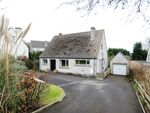 Thumbnail to rent in Whiteside, Newtownards