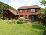 Thumbnail for sale in The Drove, Horton Heath, Eastleigh