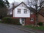 Thumbnail to rent in Vine Road, Great Sutton, Ellesmere Port