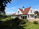 Thumbnail to rent in Sway Road, Brockenhurst, Hampshire
