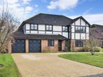 Thumbnail for sale in Barnfield Road, Petersfield, Hampshire