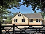 Thumbnail to rent in Ashley Drive South, Ashley Heath, Ringwood
