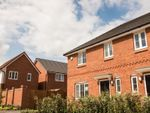 Thumbnail to rent in Cornfield Road, Rowley Regis