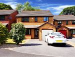 Thumbnail to rent in Wilkinson Drive, Wrexham