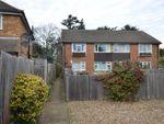 Thumbnail to rent in The Grove, Teddington