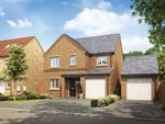 "Thumbnail to rent in ""The Lumley"" at Catterick Road, Colburn, Catterick Garrison"
