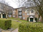 Thumbnail to rent in Alexandra Park, High Wycombe