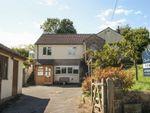 Thumbnail to rent in Anjou, Lynch Lane, Westbury Sub Mendip, Wells, Somerset