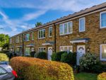 Thumbnail to rent in British Grove South, Chiswick