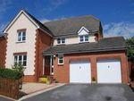 Thumbnail to rent in Farmhouse Rise, Exeter, Devon