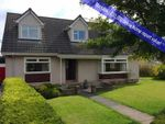 Thumbnail for sale in 4, Murray Row, Balmullo, Fife