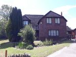 Thumbnail for sale in Heolddu House Heol-Ddu Lane, Pontllanfraith, Wales