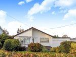 Thumbnail to rent in Drumlough Road, Hillsborough