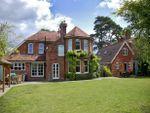 Property history Tattenham Road, Brockenhurst SO42