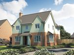 "Thumbnail to rent in ""The Osterley"" at Roman Road, Bobblestock, Hereford"
