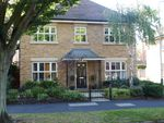 Thumbnail to rent in Avenue Road, Harold Wood