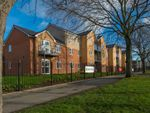 Thumbnail to rent in Ambleside Avenue, South Shields