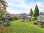 Thumbnail for sale in Conford, Liphook, Hampshire