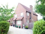Thumbnail for sale in Whatcombe Lane, Winterborne Whitechurch, Blandford Forum