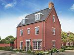 Thumbnail to rent in 80 Jaric Lane, Brampton