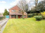 Thumbnail for sale in Sandrock Hill Road, Wrecclesham, Farnham, Surrey