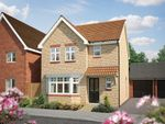 "Thumbnail to rent in ""The Epsom"" at Hadham Road, Bishop's Stortford"