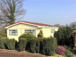 Thumbnail to rent in The Orchard, Otter Valley Park, Honiton
