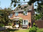 Thumbnail for sale in Bishops Waltham, Southampton, Hampshire