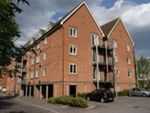 Thumbnail to rent in The Lamports, Alton