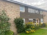 Thumbnail to rent in Fingringhoe Road, Colchester, Essex