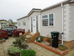 Thumbnail to rent in Little Paddock, Kinmel Bay, Conwy