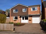 Thumbnail for sale in Nicholl Road, Epping, Essex