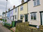 Thumbnail for sale in Rosslyn Terrace, Kelvedon, Colchester, Essex